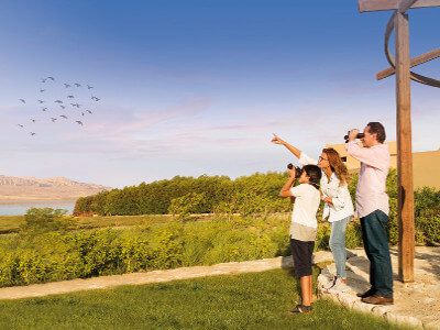 Bird Watching Fayoum Byoum Lakeside Hotel